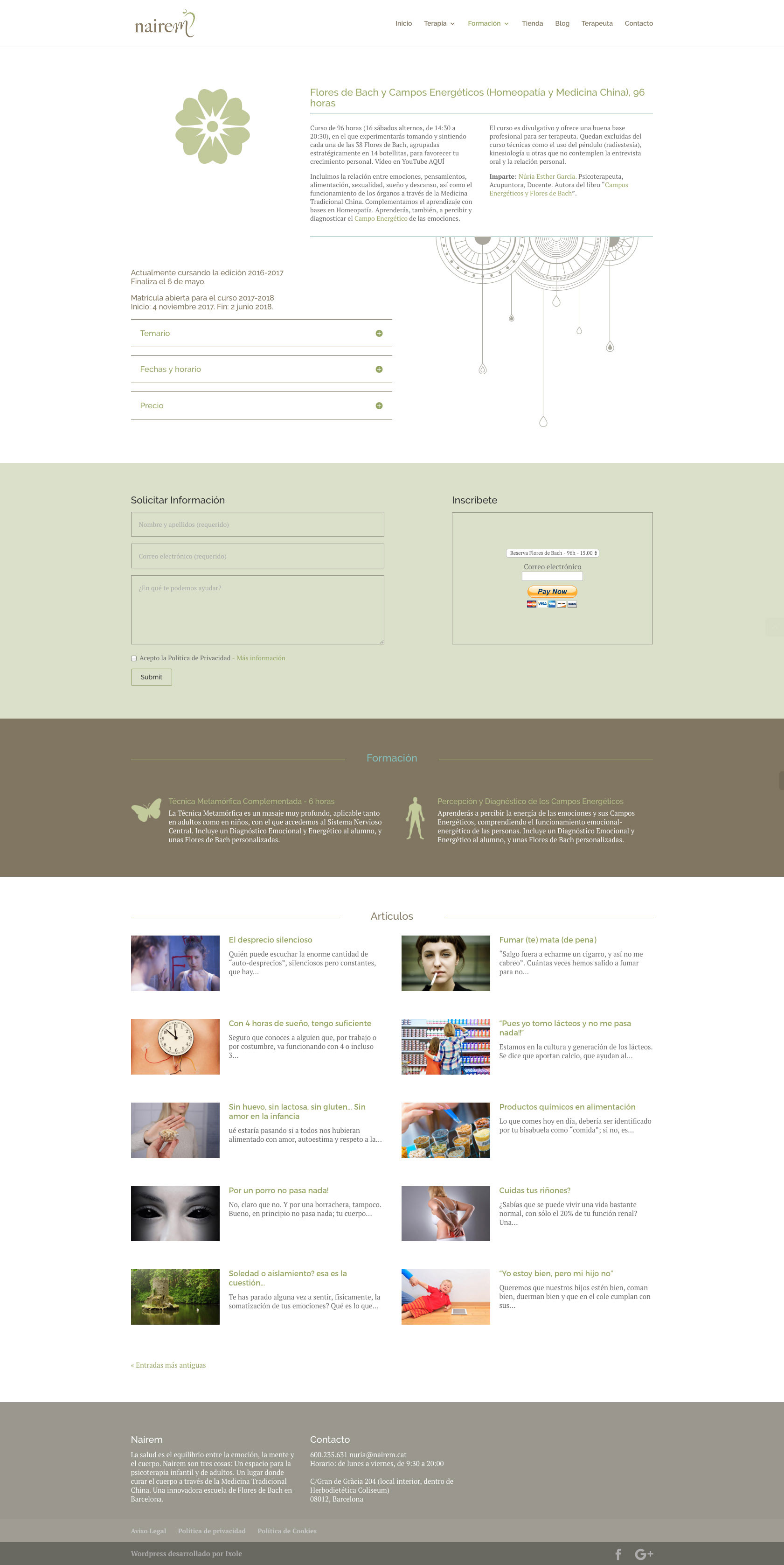 Diseño web WordPress para Nairem